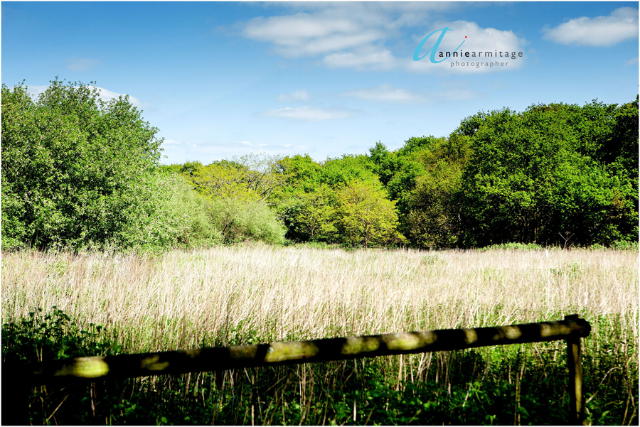 a landscape photograph of Wimbledon common in the spring with a blue sky and a couple of clouds